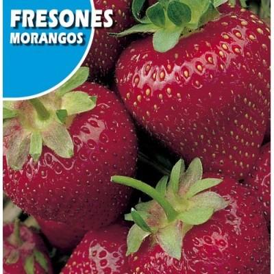 Fresones
