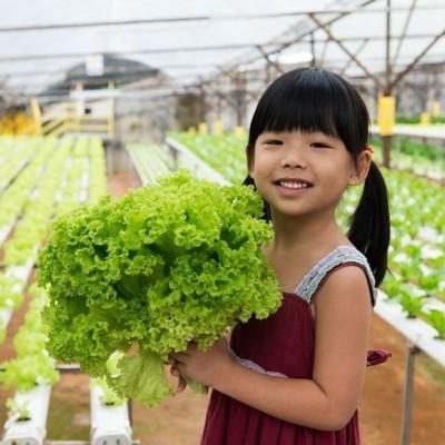 Soluciones para un futuro sostenible