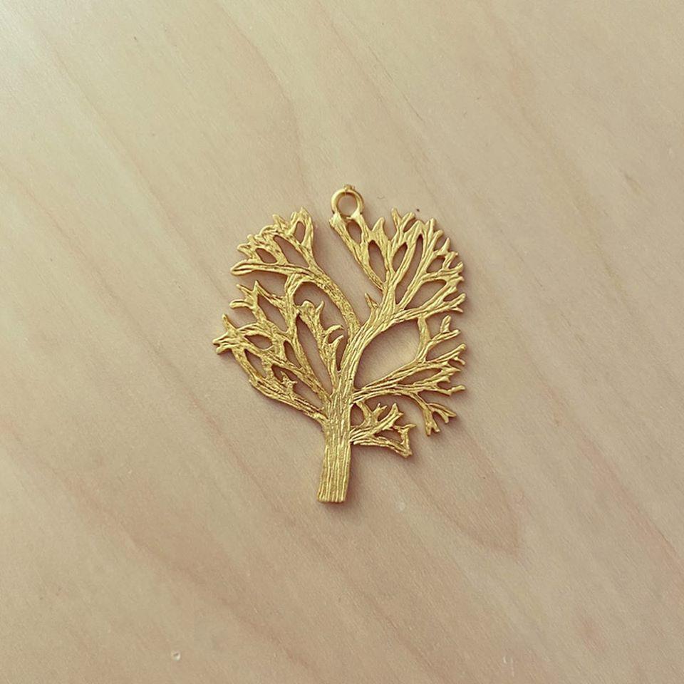 Árvore Grande Dourada Mate