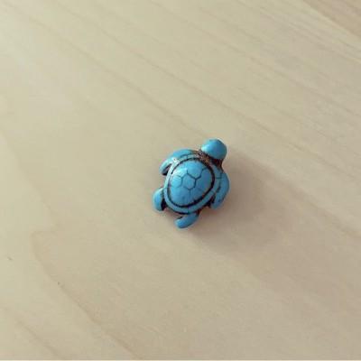Tartaruga Turquesa