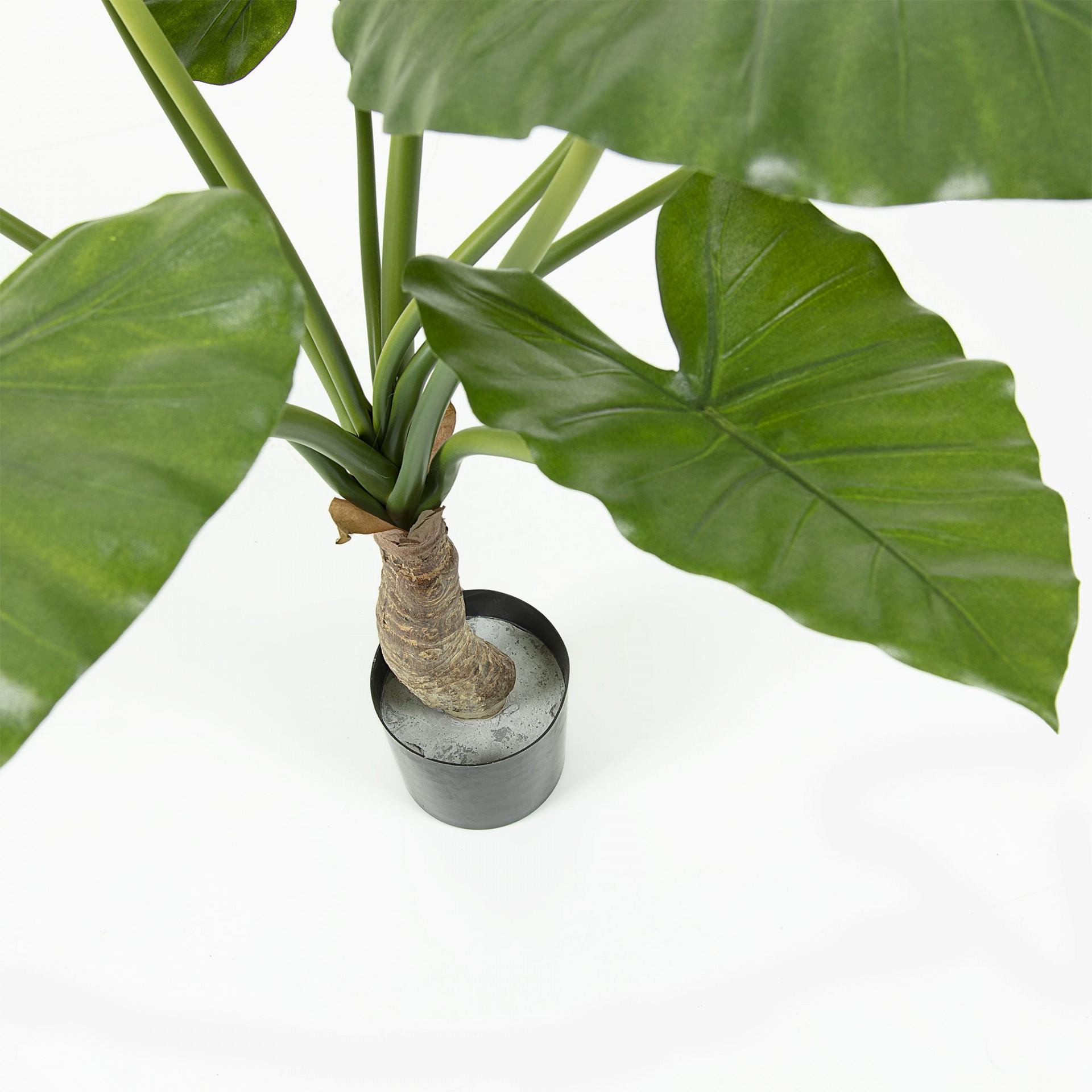 Alocasia artificial, vaso de plástico, 65x85