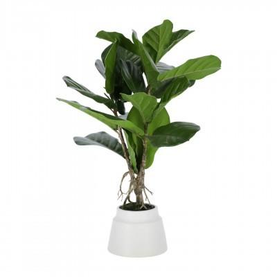 Planta artificial Lyrata, 60cm