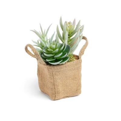 Suculenta artificial, bolsa de linho, 13x20