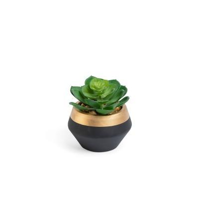 Suculenta artificial, vaso de cerâmica, preto/dourado, Ø10x11