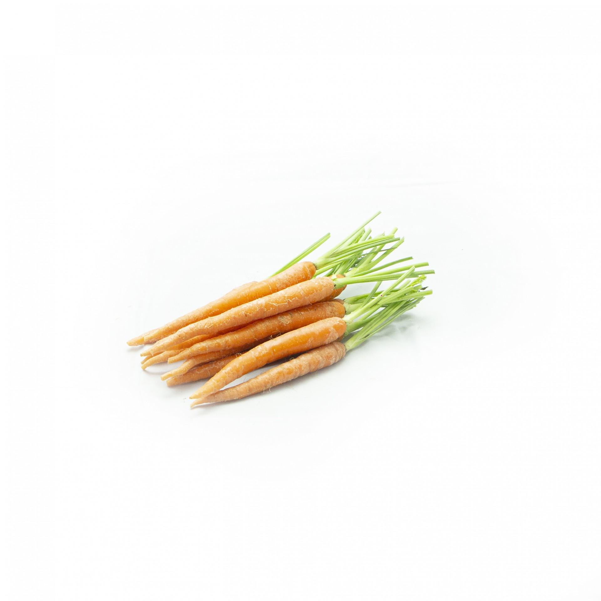 Mini Cenoura Laranja