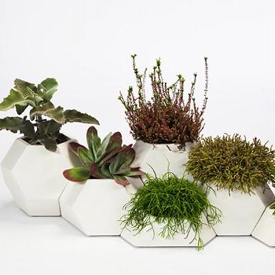 Crie um jardim modular à sua medida!