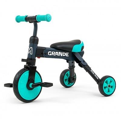 Triciclo 2in1 Grande bike Várias cores