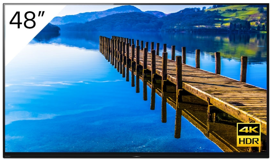 48'' 4K OLED Android Professional BRAVIA with Tuner