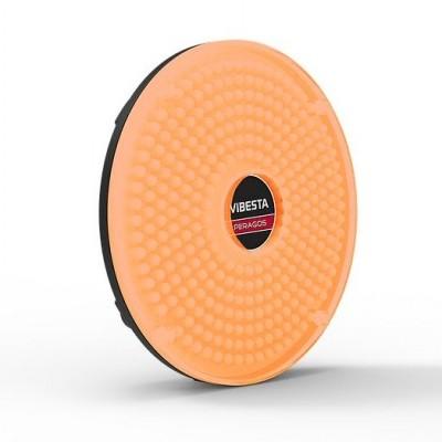 Vibesta Peragos Disk 304B Bi-color LED light