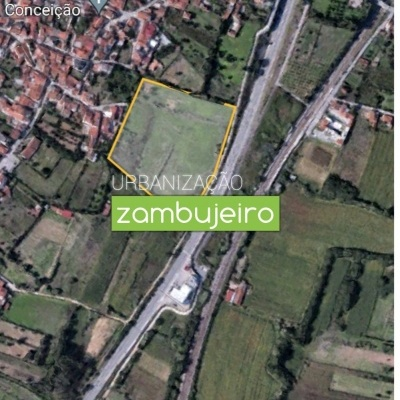 Terreno Urbanizável em Taveiro - Coimbra
