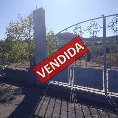 Terreno / Quinta com 5 Hectares em Almalaguês - Coimbra