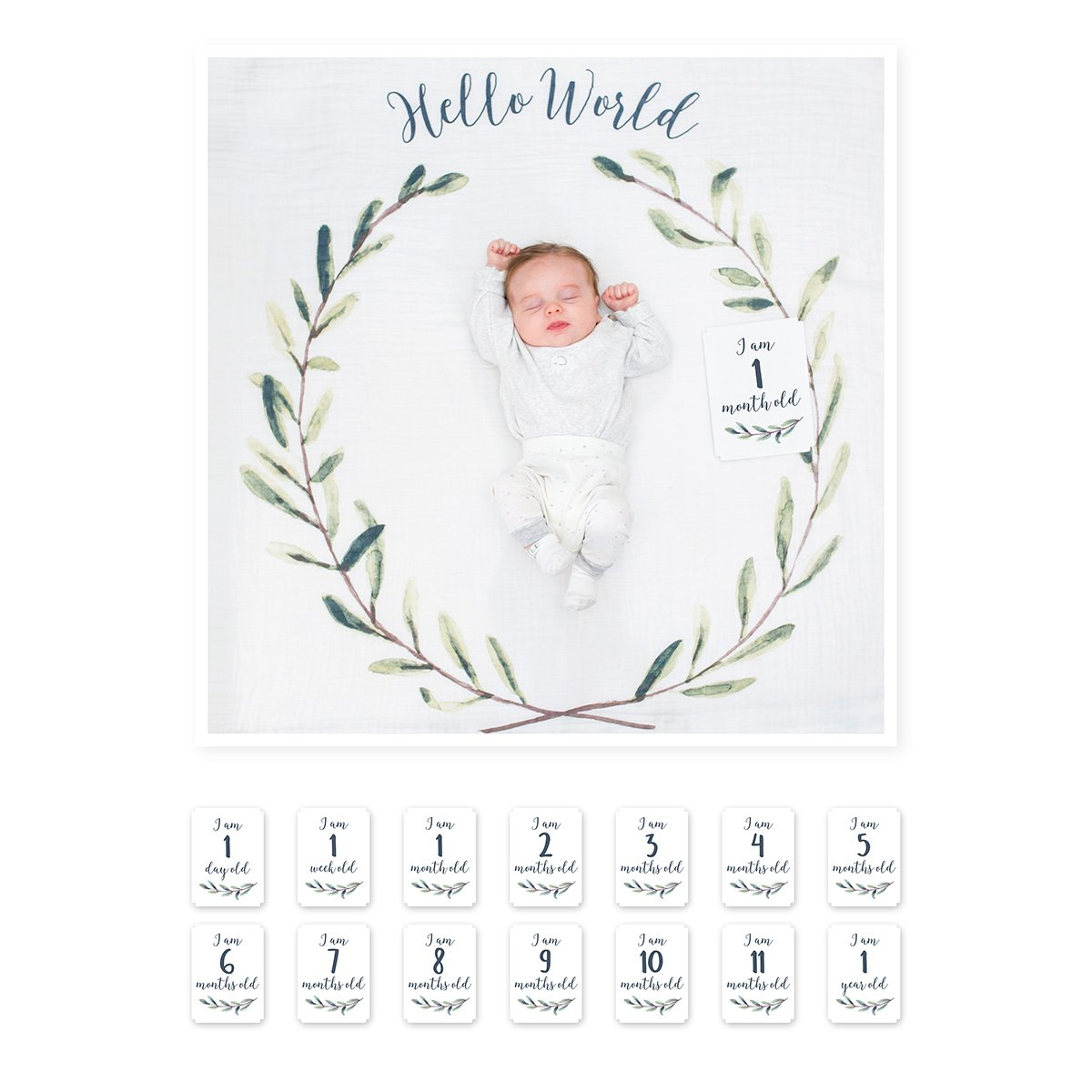 Baby's First Year | Hello World