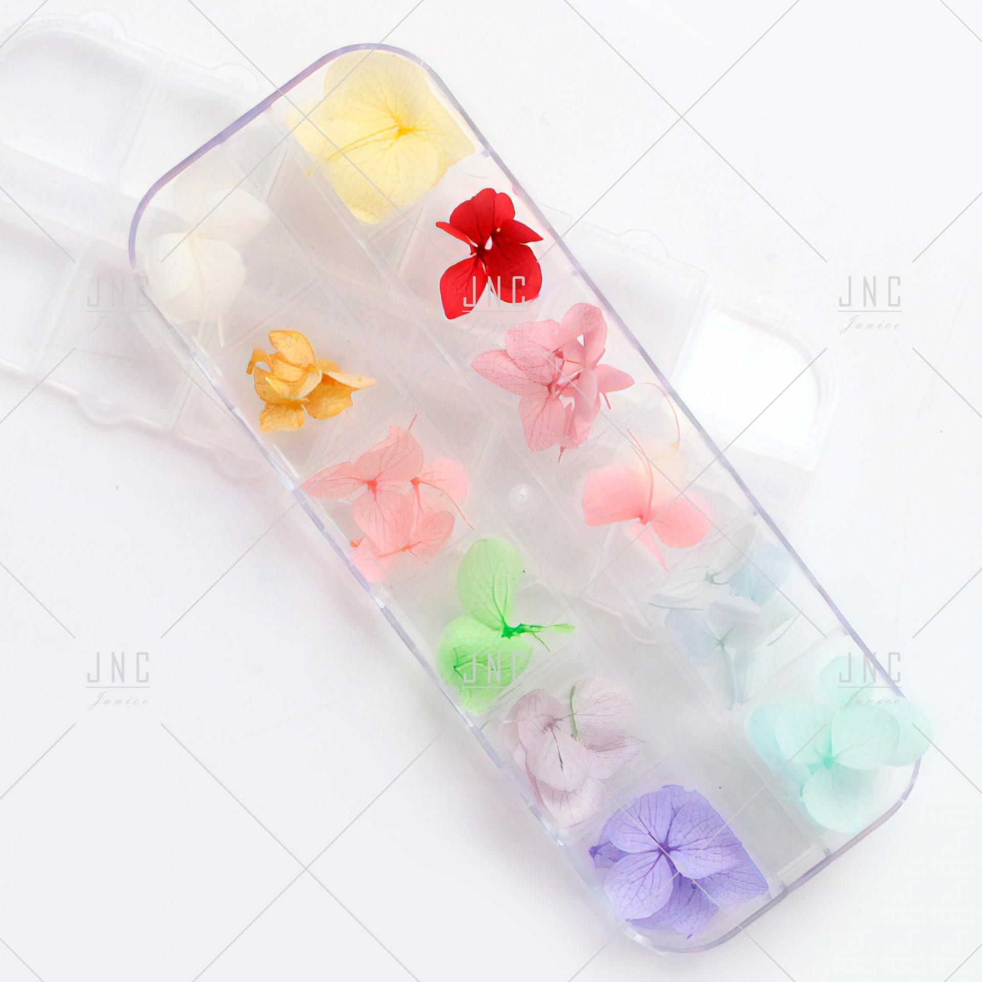Flores Secas para Nail Art | Ref.862097
