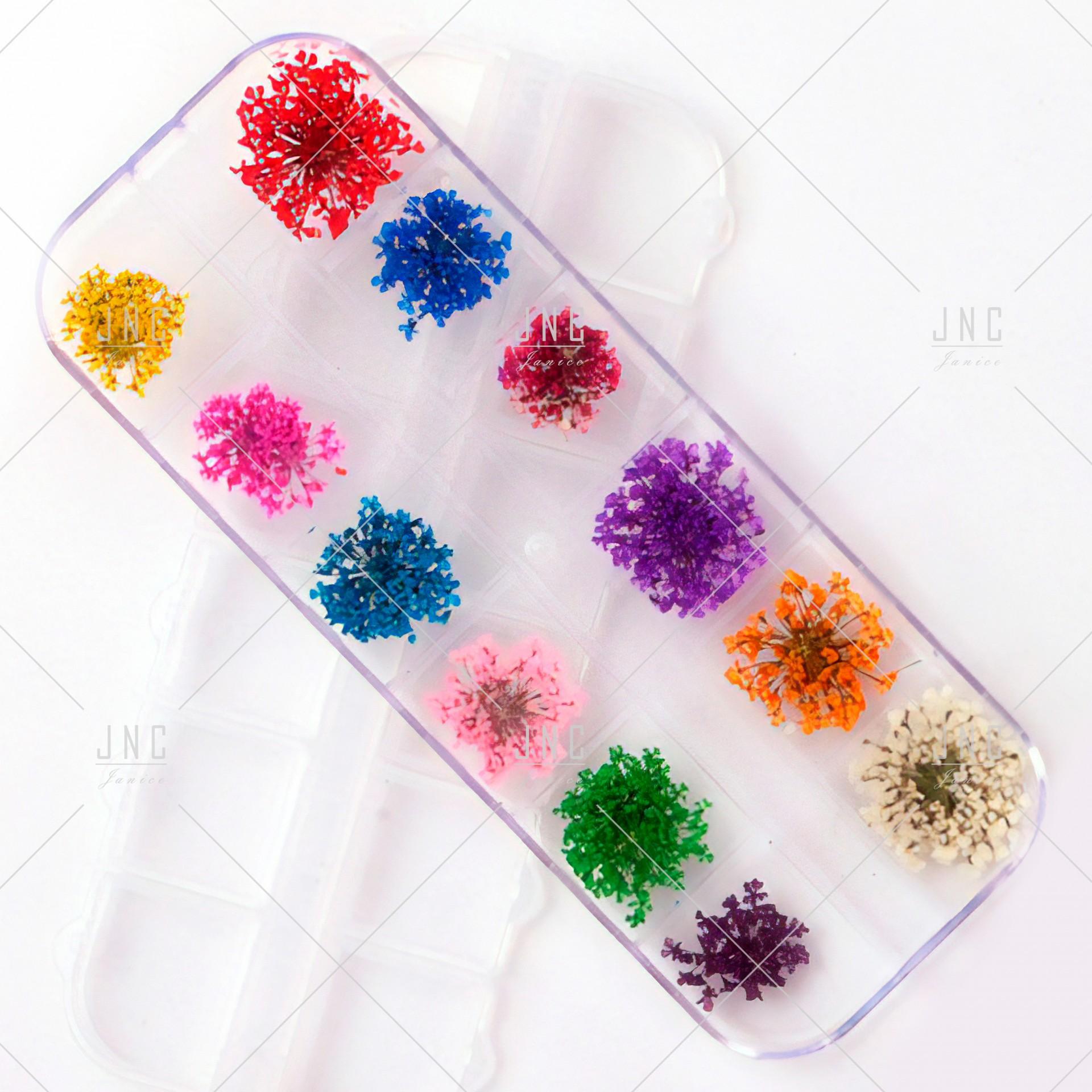 Flores Secas para Nail Art | Ref.862100