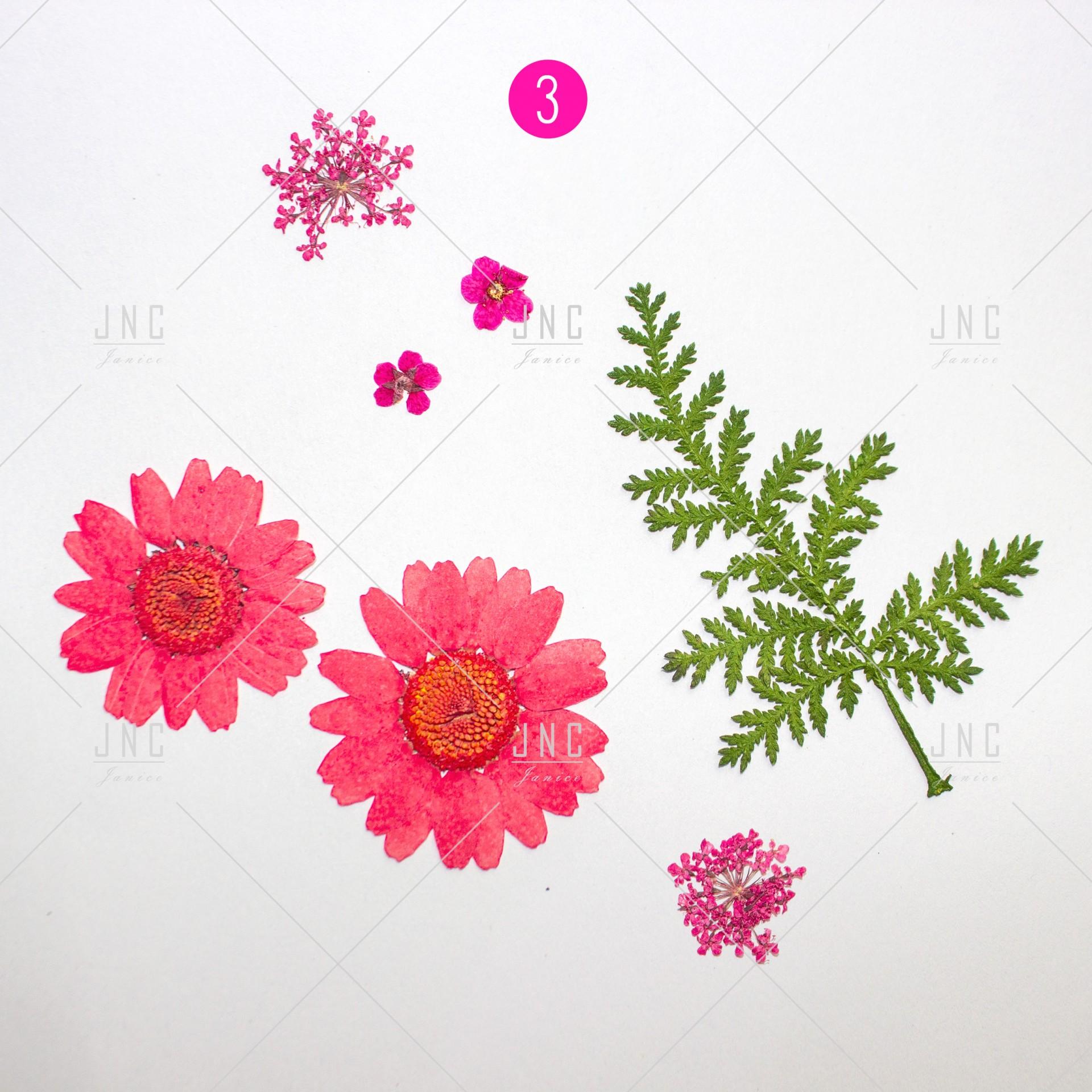 Flores Secas para Nail Art | Ref.861920