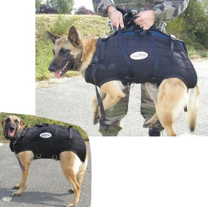 Arnês de Heli-Transporte PRO para cães MORIN