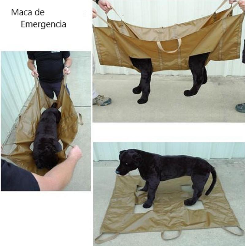 Maca de emergência para evacuação de um cão ferido