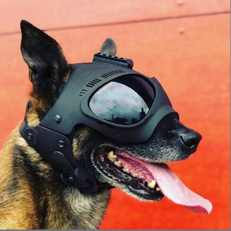 Capacete de proteção tático para cães K9 MORIN PRO