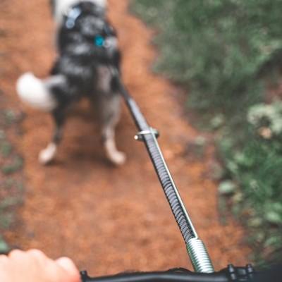 Barra de tração Flexivel da NON-STOP Dogwear