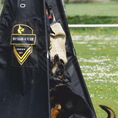 Tenda Esconderijo 4 pernas para treino DINGO GEAR