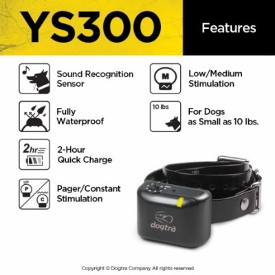 YS 300