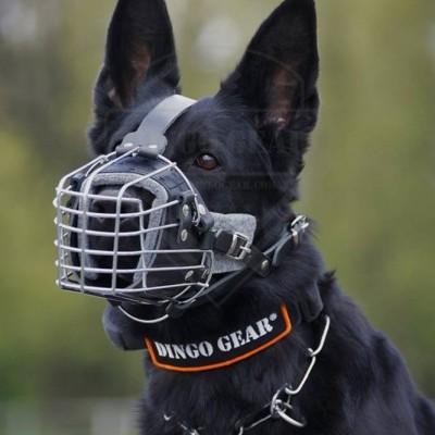Açaime para treino de cão DINGO GEAR
