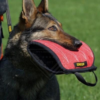 Cunha - mordedor de cachorro feito de material francês DINGO GEAR