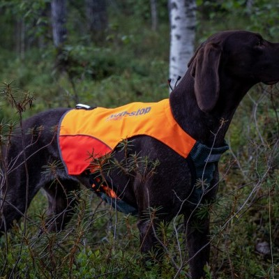 Colete PROTECTOR  da NON-STOP Dogwear