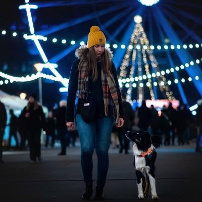 Coleira SAFE  da NON-STOP Dogwear