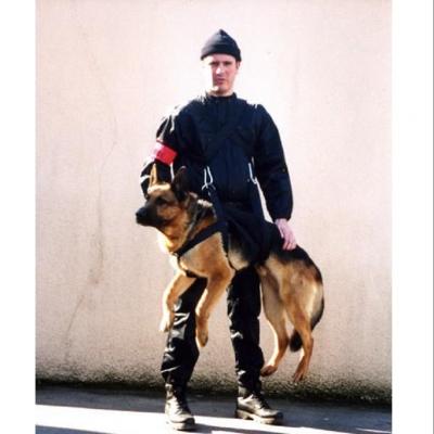 Arnês de transporte de intervenção para cães MORIN