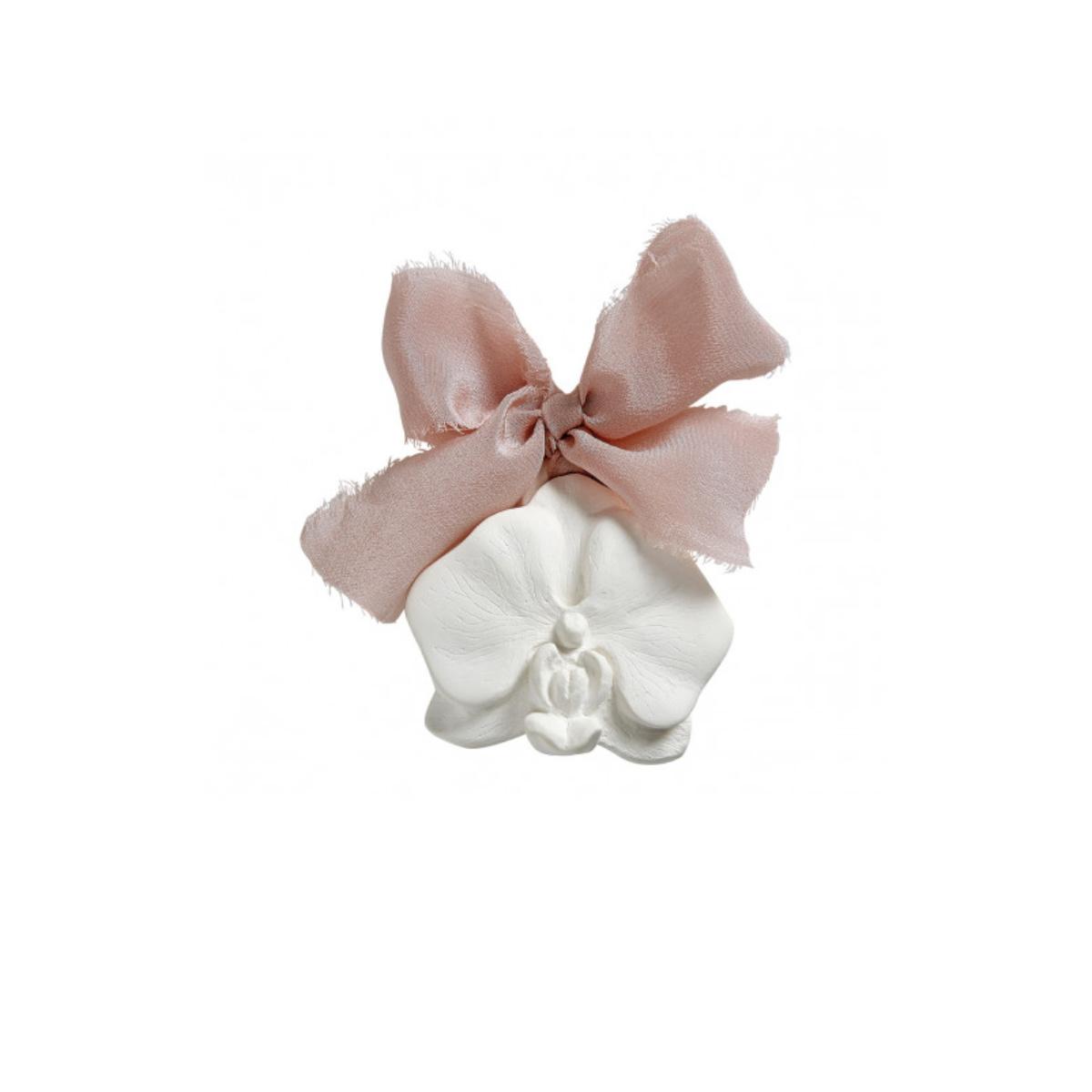 Orquídea perfumada
