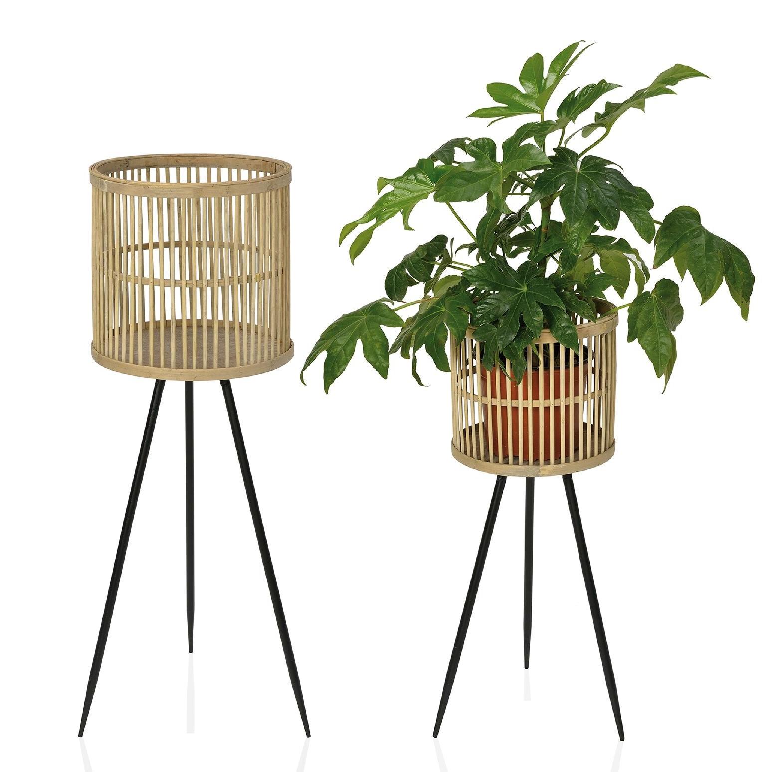 Vaso em bambú