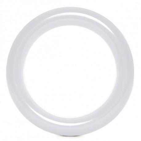 Circular T9