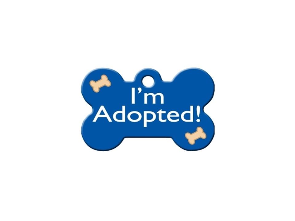 """Osso """"I'm Adopted!"""" Azul"""
