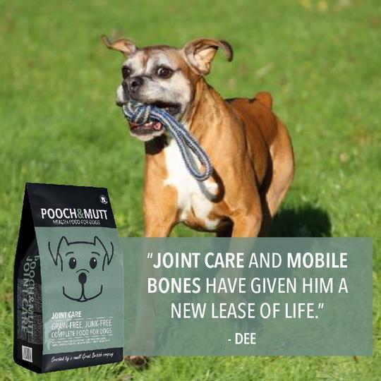 JOINT CARE (Articulações / Ossos / Músculos)
