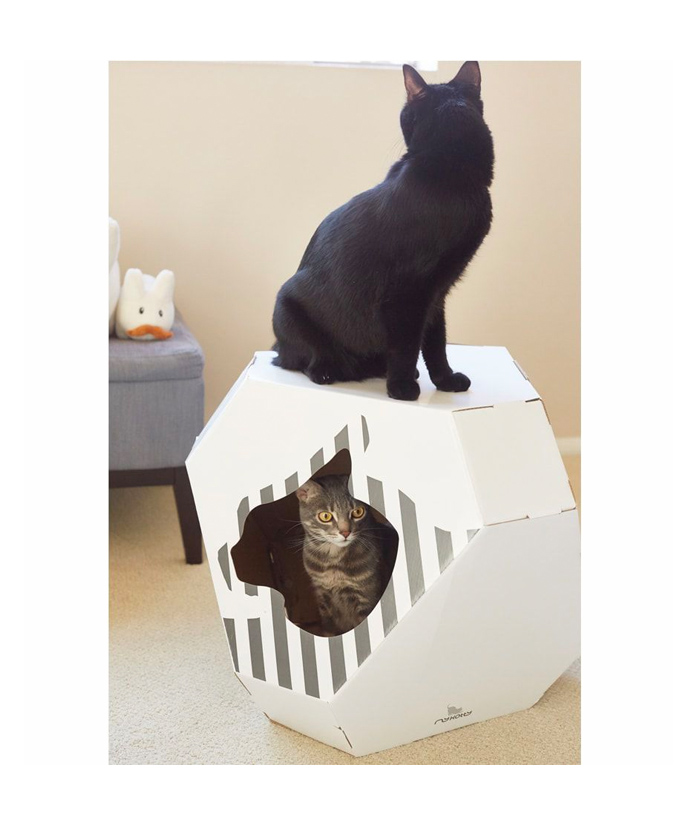 MyKotty MIA Reversible Cat House
