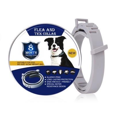 Flea and Tick Collar Cão