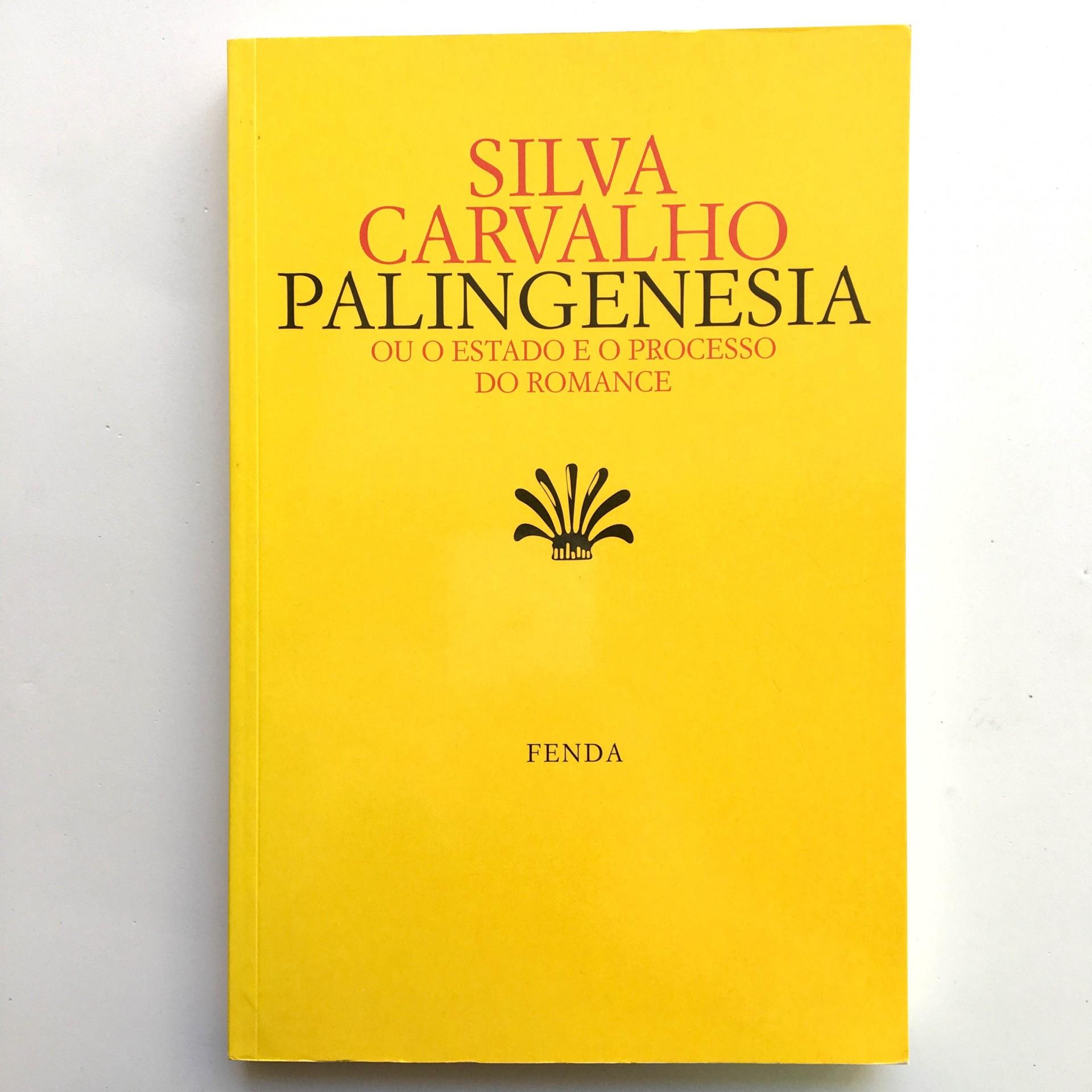 Palingenesia ou o Estado e o Processo do Romance