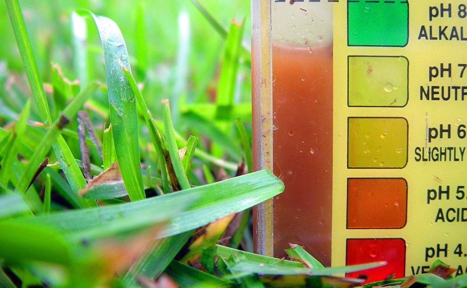 Aperfeiçoar o pH da solução nutritiva
