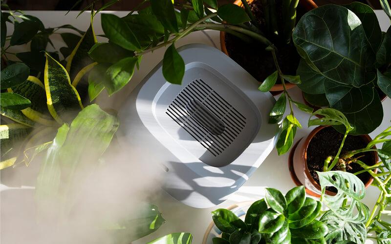 controlar a estufa hidroponia