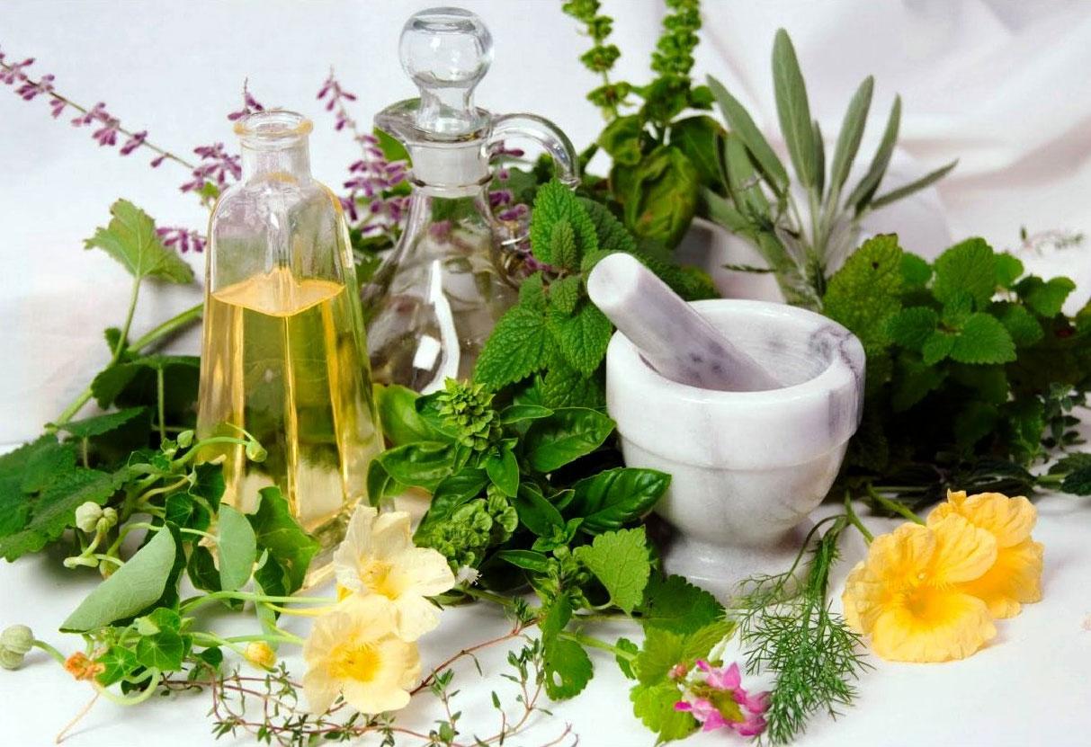 A química das plantas