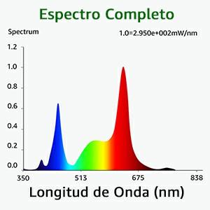 luzes hidroponia
