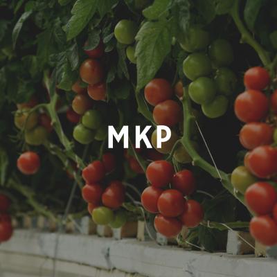 1 kg MKP