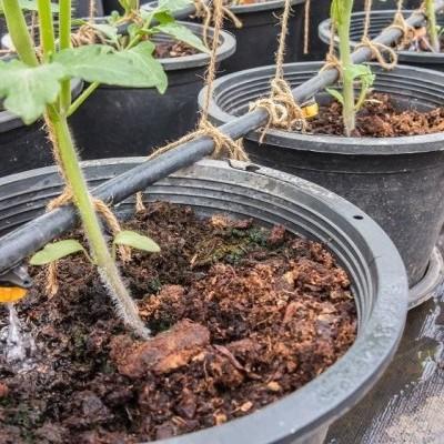 Controlar a irrigação