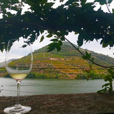 Farm-to-Table no Douro