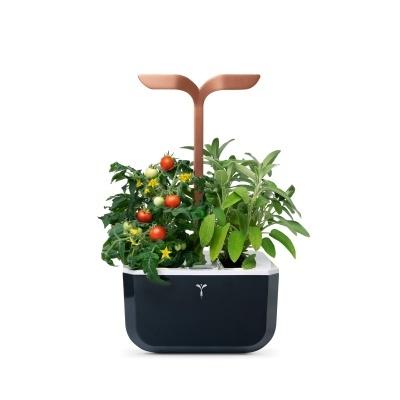 Mini Horta Urbana - Smart Cooper Edition