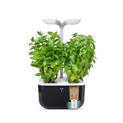 Mini Horta Urbana - Smart Edition Preto