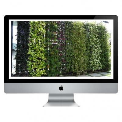 Curso Online - Jardins Verticais