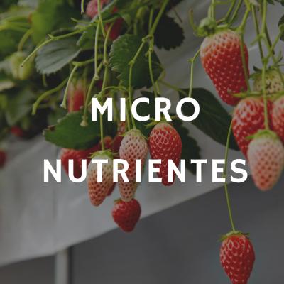 1 kg Micronutrientes