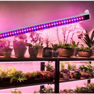Lâmpada de 48 LEDs